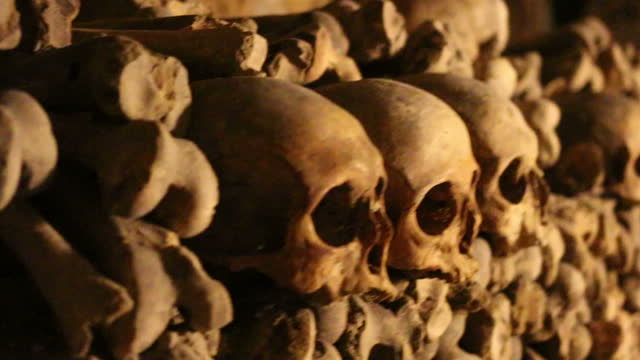Wall of skulls and bones in the Paris catacombs