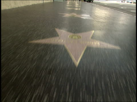 of wallking hollywood walk of fame - walk of fame stock videos & royalty-free footage