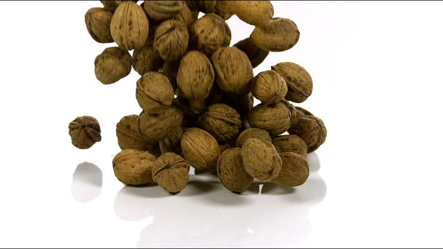 """walnut, juglans regia, fruits falling against white background, slow motion"" - walnut stock videos & royalty-free footage"