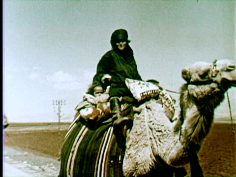 ms wandering people by camel and donkey men digging land for planting, beruit, lebanon / audio - 1960 stock-videos und b-roll-filmmaterial