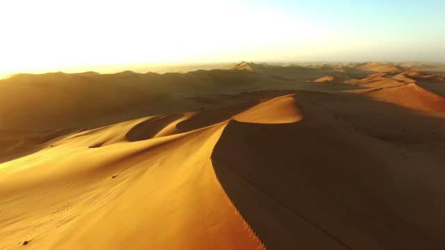 Wandering the desert sands