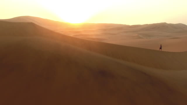 wandering through a desert sunrise - impronta del piede video stock e b–roll
