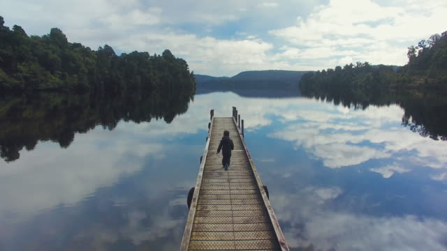 wanderlust lake mapourika, south island, new zealand. - scoperta video stock e b–roll