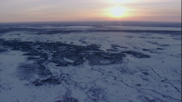 a waning sun casts rosy light over tundra and a boreal forest in churchill, canada. available in hd. - boreal forest stock videos & royalty-free footage
