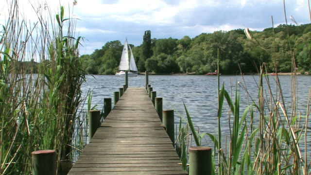 wannsee (berlin) sailing - lakeshore stock videos and b-roll footage