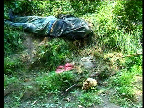 stockvideo's en b-roll-footage met war crimes investigations lib serbia kosovo raven sitting on board marking grave skull laying in grass remains in grass remains in grass pan over fly... - kosovo