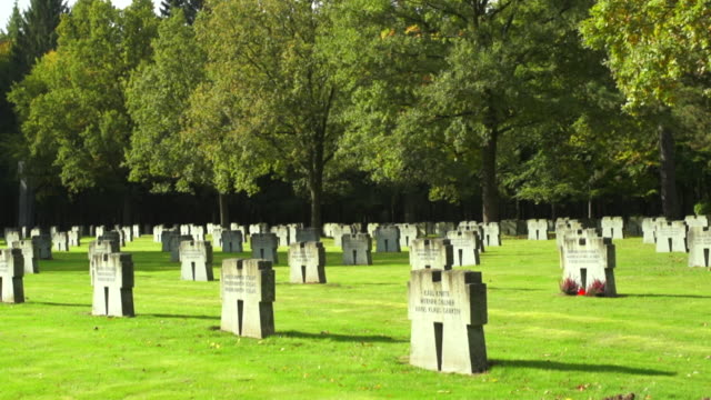 pan war graves in the  huertgen forest cemetery in the eifel hills (motion controlled shot)  - grab stock-videos und b-roll-filmmaterial
