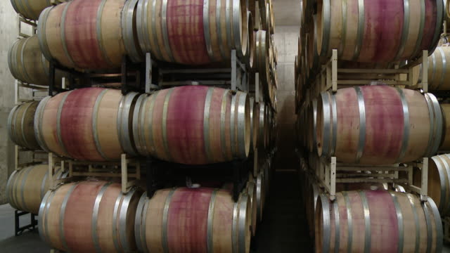 A warehouse where barrels are disposed for wine