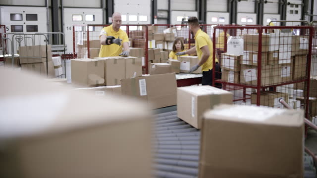 ld warehouse workers scanning and stacking the packages travelling on the conveyor belt - deposito video stock e b–roll