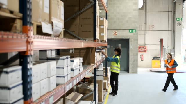 warehouse workers. - distribution warehouse stock videos & royalty-free footage