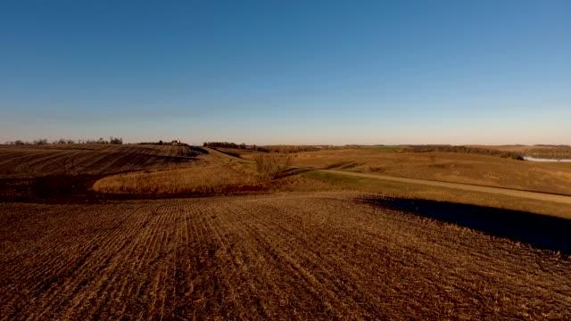 vídeos de stock, filmes e b-roll de quente campo colhido no outono - colher atividade agrícola