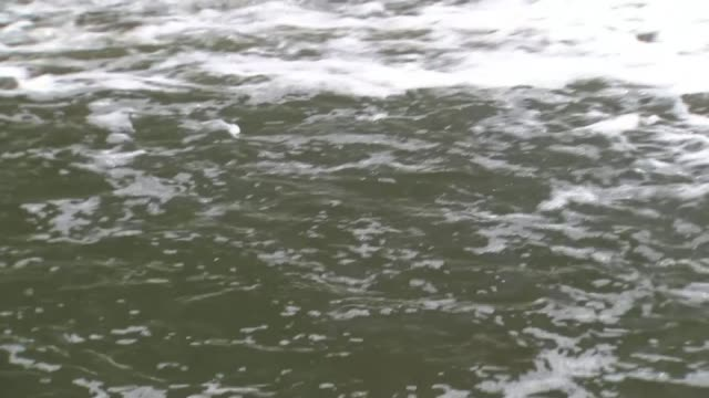 rnli warn against swimming in the thames during hot weather england greater manchester bury river irwell ext various shots of waterfall and river... - damon green stock videos and b-roll footage