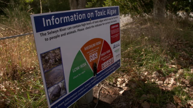 vídeos de stock, filmes e b-roll de warning information sign on toxic algae present in selwyn river showing medium risk - sinal de advertência