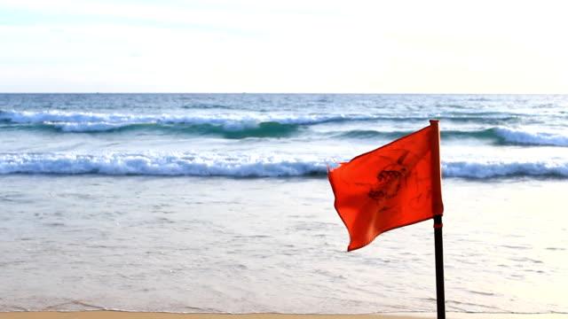 vídeos de stock e filmes b-roll de tubarão de aviso - sinal de perigo sinal