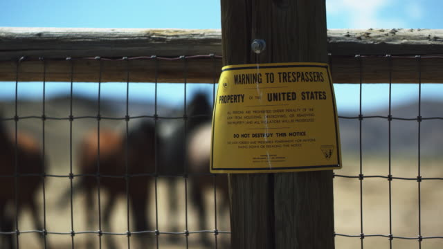 warning sign on fence of corral with wild horses in background - corral stock videos & royalty-free footage