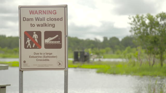 "vídeos y material grabado en eventos de stock de warning sign with wetlands area behind ""warning dam wall closed to walking due to large estuarine saltwater crocodile / various shots wetlands swamp... - señal de advertencia"