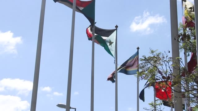 vídeos de stock e filmes b-roll de warring parties in south sudan delayed direct peace talks on saturday dashing hopes of a swift ceasefire to end raging fighting and the risk of a... - corno de áfrica