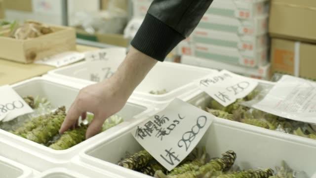 wasabi shopping at toyosu market, tokyo - wasabi stock videos and b-roll footage