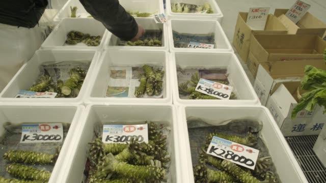 Wasabi shopping at Toyosu Market, Tokyo