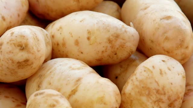 vidéos et rushes de délavé pommes de terre dans une passoire - pomme de terre