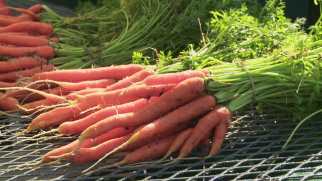 cu washing freshly harvested carrots - carrot stock videos and b-roll footage