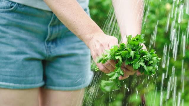 Washing parsley
