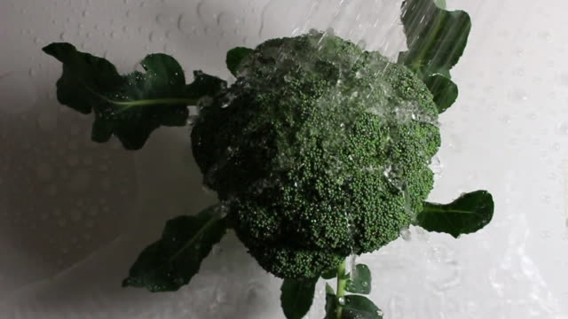 washing the broccoli - crucifers stock videos and b-roll footage