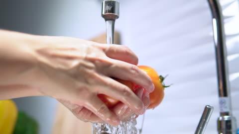 vidéos et rushes de la tomate de lavage - laver