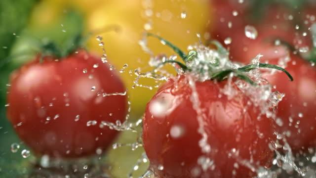 vídeos de stock, filmes e b-roll de slo mo cu lavar tomates - tomate