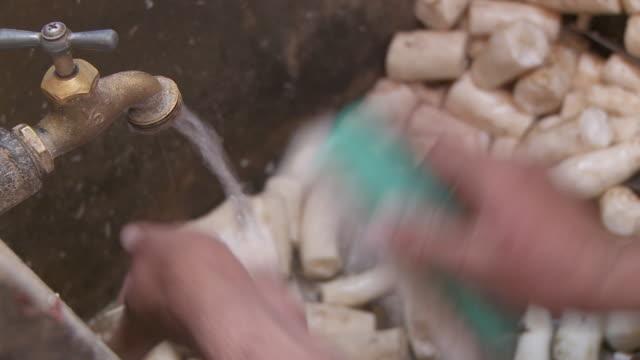 cu washing yucca / havana, cuba - yucca stock videos & royalty-free footage