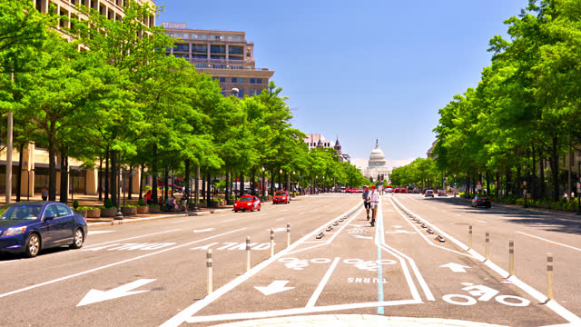 washington dc street. senate. tree - united states congress stock videos & royalty-free footage