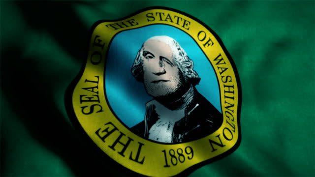 washington flag waving animation - country geographic area stock videos and b-roll footage