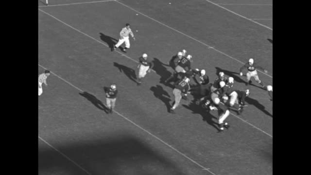 vídeos de stock e filmes b-roll de washington huskies player dean mcadams passes ball to earl younglove who crosses into end zone for touchdown / rear view of crowds cheering in stands... - universidade de washington