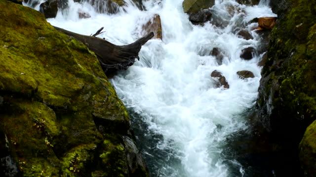 washington state, mt rainier waterfall , landscape - pierce county washington state stock videos & royalty-free footage