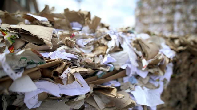 Waste cardboard and paper is collected and packed for recycling. Dump of old stacked cardboard box.Recycling center collects paper and carton boxes