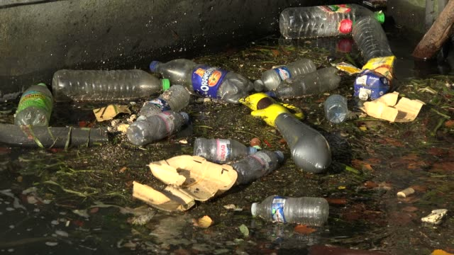 waste in seine river, paris, france, europe - france stock videos & royalty-free footage
