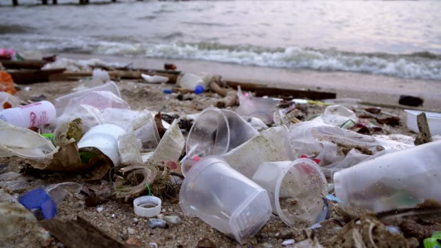 waste pollution on beach - obsoleto video stock e b–roll