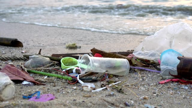 waste pollution on beach - tourism stock videos & royalty-free footage