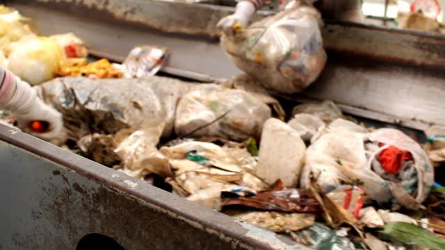 Müll sortieren