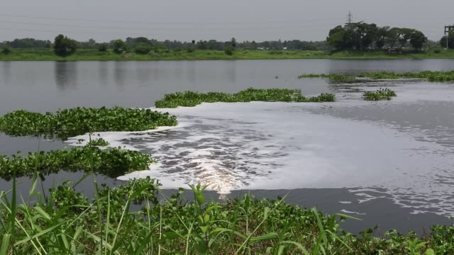 wastewater from savar tannery industrial estate being dumped into the dhaleshwari river through a pipe as the tk 1000crore central effluent treatment... - savar stock videos and b-roll footage
