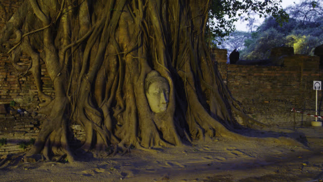 wat pra mahatat - buddha stock videos & royalty-free footage