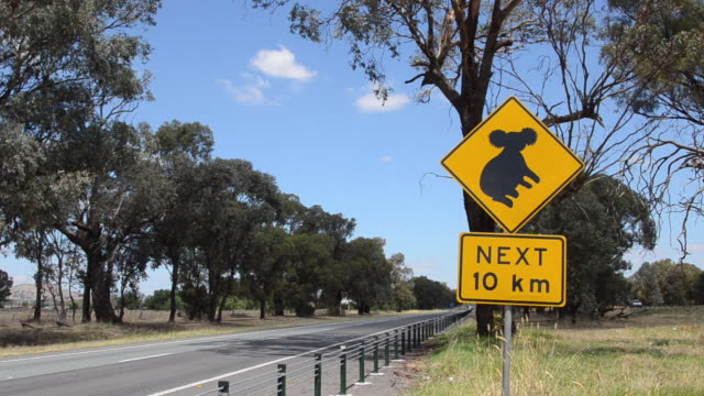 watch sign for koala bear on drive in hume freeway above melbourne freeway in new south wales australia - beuteltier stock-videos und b-roll-filmmaterial