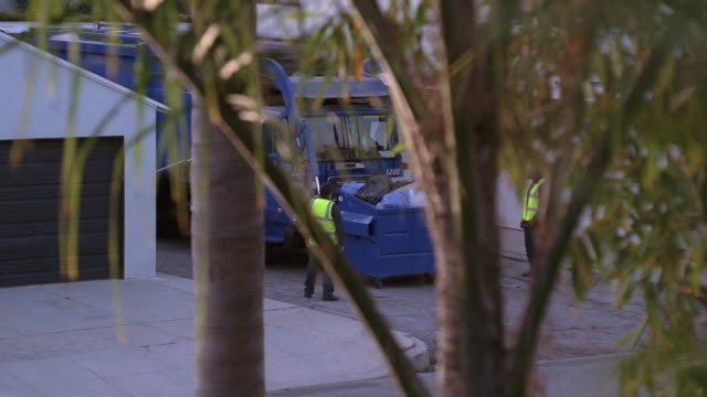stockvideo's en b-roll-footage met pov watching out a second-floor window through leafy tree branches as a garbage truck empties a dumpster and a jogger runs past a commercial garage with the bay doors closed / santa monica, california, united states - afvalcontainer container