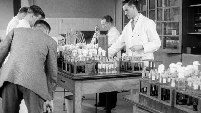 1948 MONTAGE Water being tested in a laboratory for bacteria / London, England