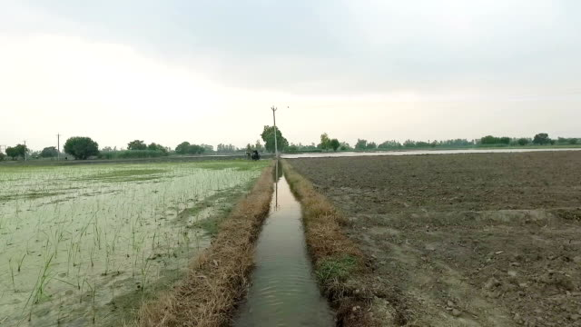 water canal for irrigation purpose - water conservation stock videos & royalty-free footage
