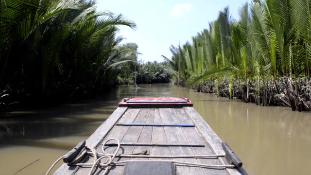water canal on the mokong delta, vietnam - andare in canoa video stock e b–roll