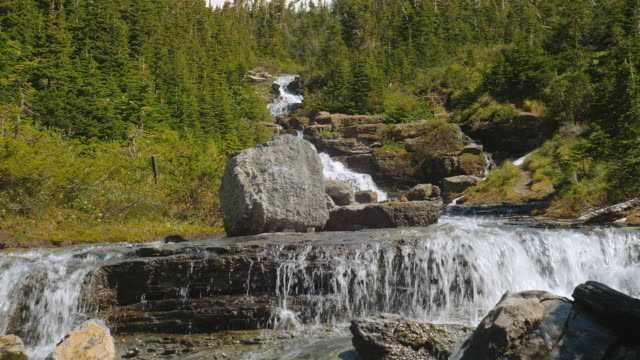 water cascades down a mountainside in glacier national park, montana. - glacier nationalpark stock-videos und b-roll-filmmaterial