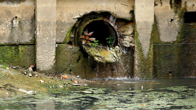 water drain - water pollution stock videos & royalty-free footage