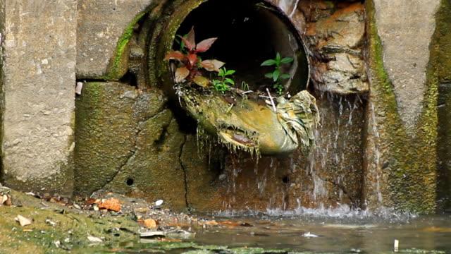 vídeos y material grabado en eventos de stock de drenaje de agua - antihigiénico