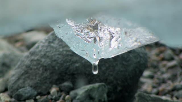 cu, water dripping off melting  ice, reid glacier, reid inlet, glacier bay national park and preserve, alaska, usa - アラスカ点の映像素材/bロール